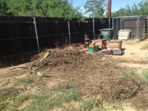 Yard debris cleanup